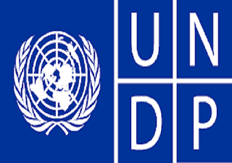 Consultant – Inclusive and Risk Financing at the United Nations Development Programme (UNDP)
