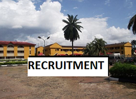 Front Office Personnel / Guest Service Agent at Precious Palm Royal Hotel