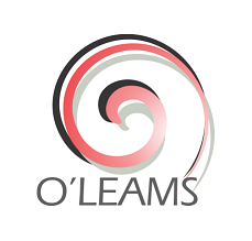 Account Officer at O'leams Oilfield Services Limited