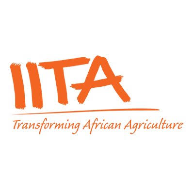 Communication and Knowledge Manager at the International Institute of Tropical Agriculture (IITA)